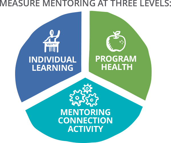 Measure mentoring at three levels- individual learning, program health and mentoring connection activity